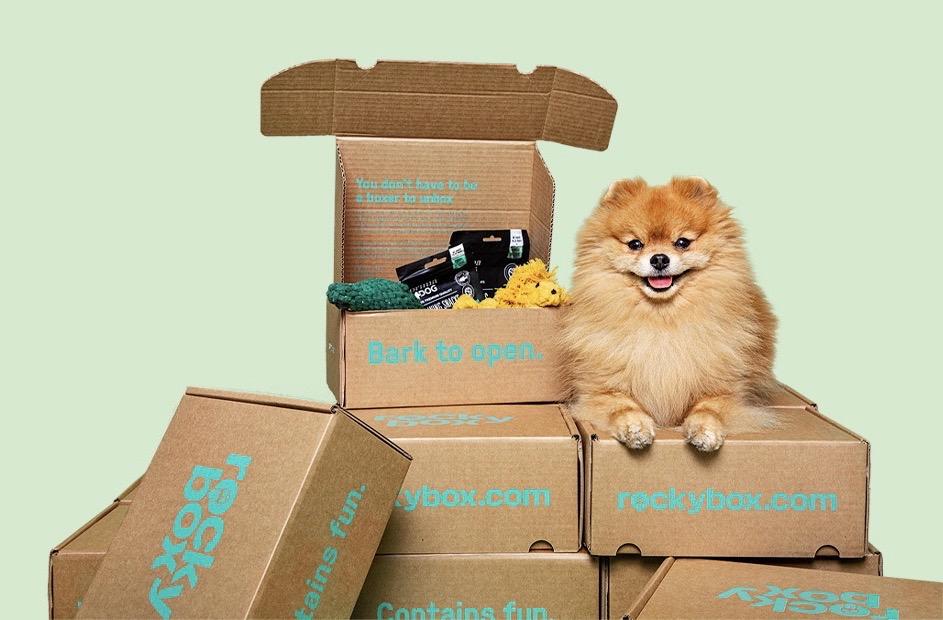Rockybox_prenumerationsbox fylld med nyttiga snacks, roliga leksaker och accessoarer