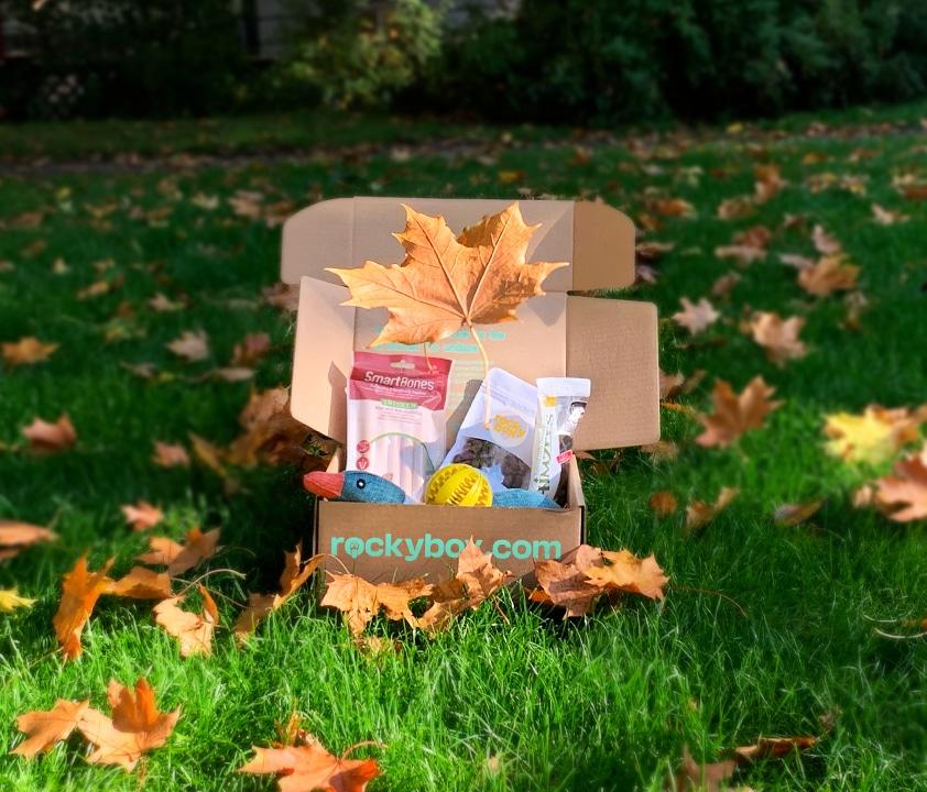 Oktoberboxen Falling in Löv är här