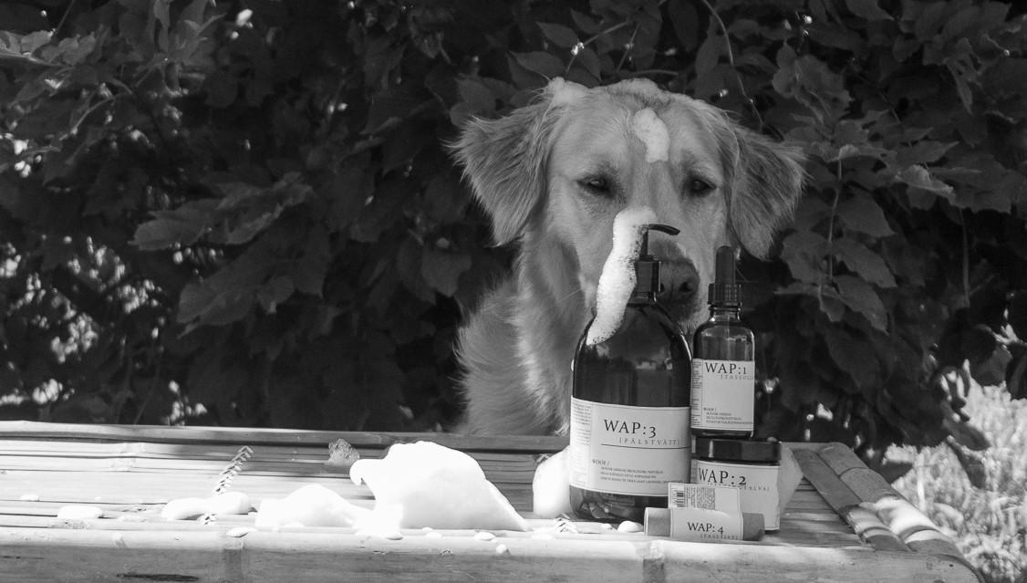 WAP Dog Care Products: Ett företag med hjärtat på rätt ställe