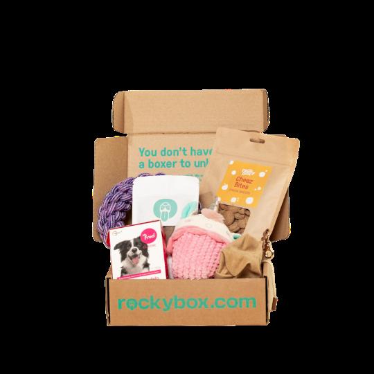 Hundbox med godis och rosa och lila leksaker